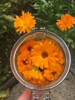 kath flowers
